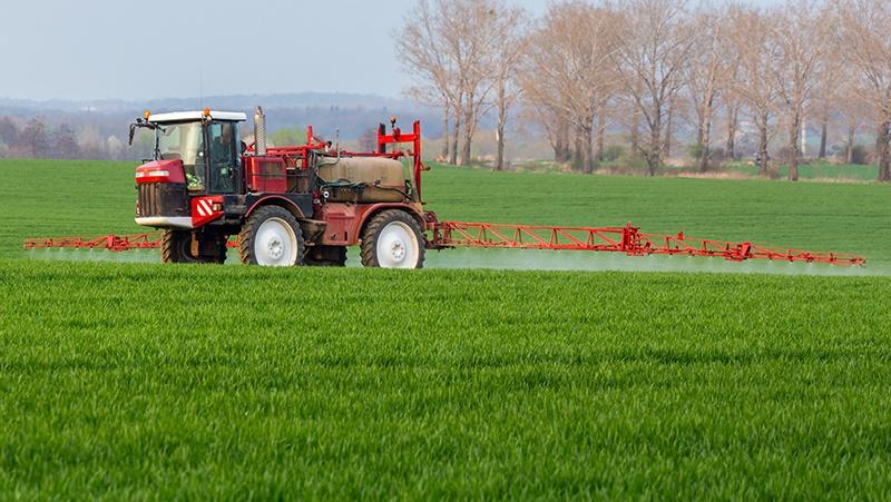 Agriculture-800x451.jpg
